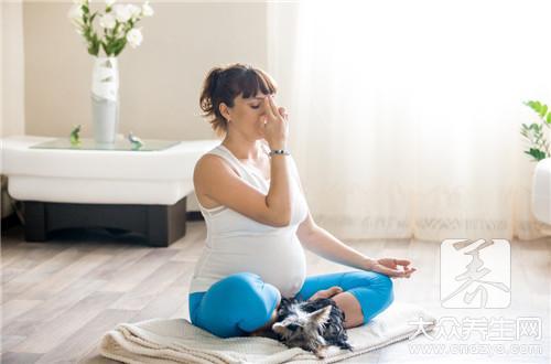 孕中期腰痛
