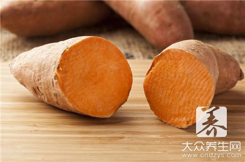 红薯有几种品种
