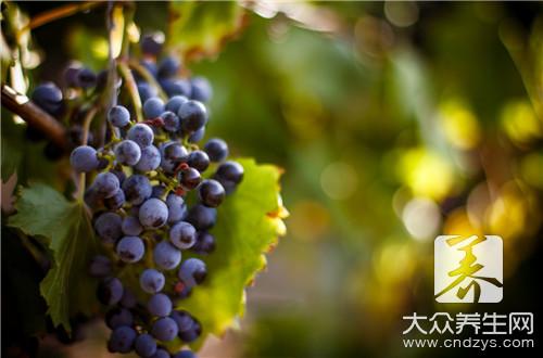 葡萄酒二次发酵有气泡怎么办?